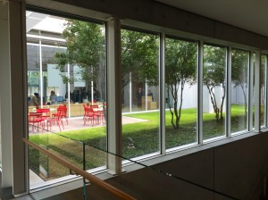 Large windows and a courtyard at the Kimbell