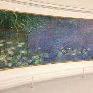 Monet Waterlilies