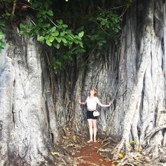 Amazing trees!